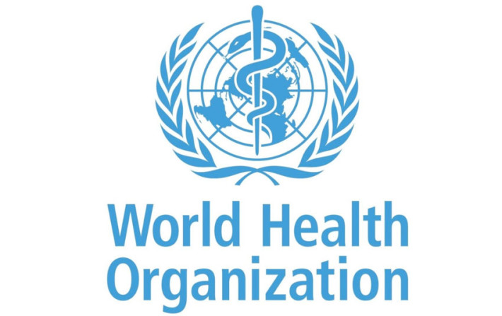 WHO Global Strategy and Action Plan on Ageing and Health