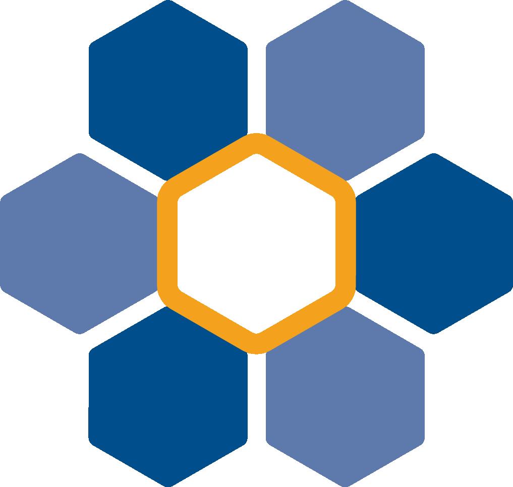 ProjectValueCare logo icon RGB hires